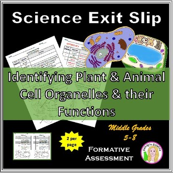Plant and Animal Cell Organelle Exit Slip