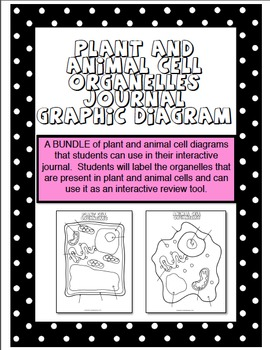 Plant and Animal Cell Organelles Diagram BUNDLE