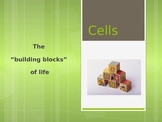 Plant and Animal Cell PowerPoint