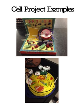 Plant and Animal Cell Project Editable
