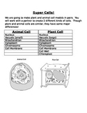 Plant and Animal Cell Project with Rubric