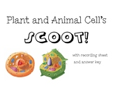 Plant and Animal Cell Scoot!