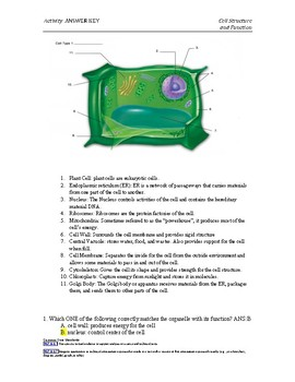 Plant and Animal Cell Structure Activity