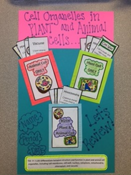Plant and Animal Cell Study Cards for Interactive Notebook