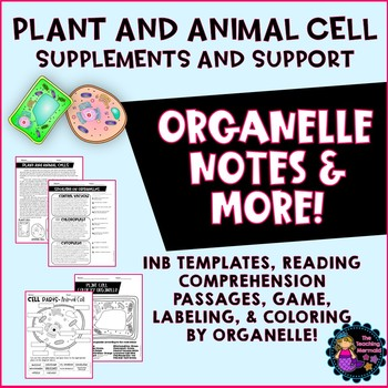 Plant And Animal Cells Activity & Worksheets | Teachers Pay