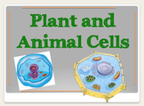 Plant and Animal Cells Powerpoint