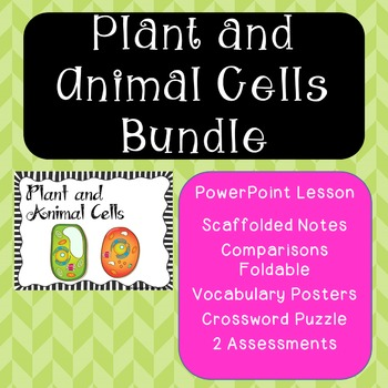 Plant and Animal Cells {Bundle-Lesson, Study Guide, Assess