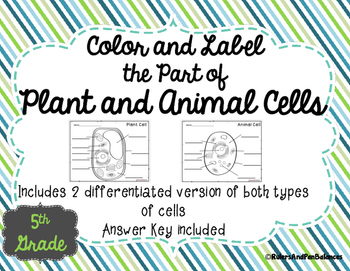 Plant and Animal Cells Color and Label Parts