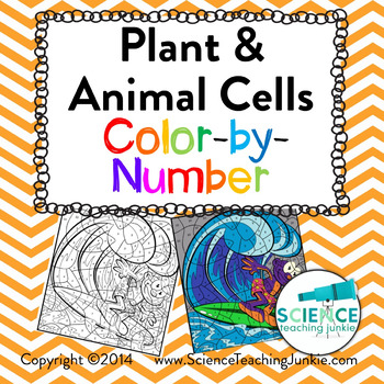 Plant And Animal Cells Color By Number