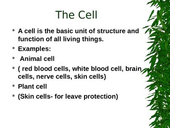 Plant and Animal Cells- Compare and Contrast