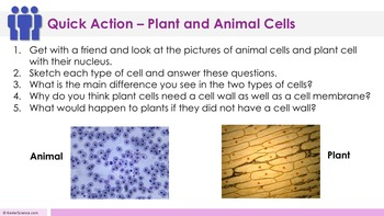 Plant and Animal Cells Complete 5E Lesson Plan - Distance Learning