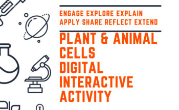 Plant and Animal Cells Hyperdoc