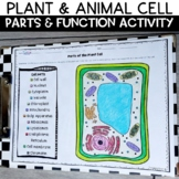 Plant and Animal Cells Part and Function Label and Summari