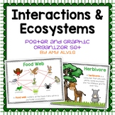 Interactions & Ecosystems Posters and Interactive Notebook INB Set