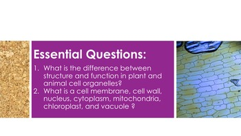 Plant and Animal Cells - Supplemental Lesson - No Lab