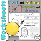 Plant and Animal Cell Organelles and Structures Worksheets