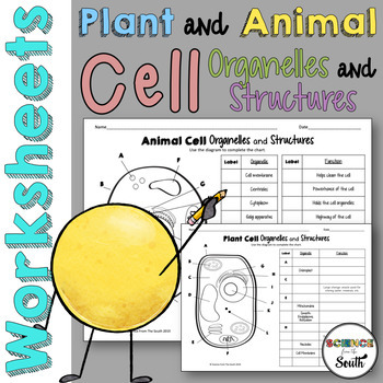Plant and Animal Cell Organelles and Structures Worksheets | TpT