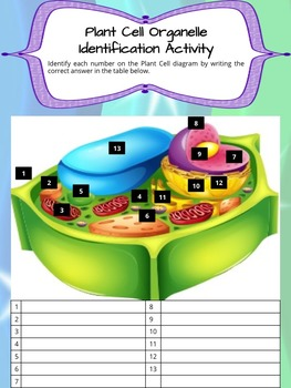 Plant and Animal Cells with iCell : An Interactive Way to Learn About Cells