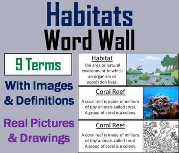 Plant and Animal Habitats Word Wall Cards (Ecosystems Unit)
