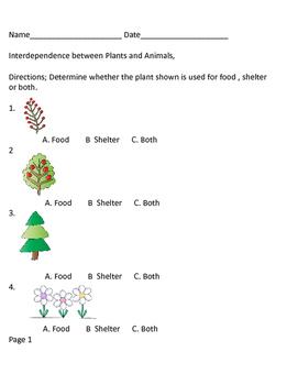 Plant and Animal Interdependencies