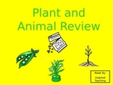 Plant and Animal Life Cycle Interactive Power Point