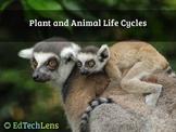 Plant and Animal Life Cycles PDF