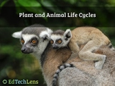 Plant and Animal Life Cycles Distance Learning PDF