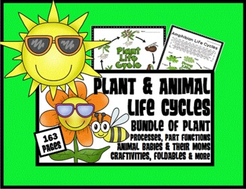 Plant and Animal Life Cycles Processes, Functions, Parts,
