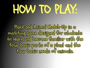 Plant and Animal Match Up