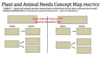 Plant and Animal Needs Puzzle Pieces