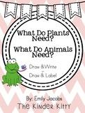 Plant and Animal Needs: Writing