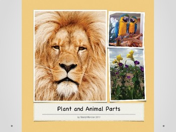 Plant and Animal Parts Power Point Presentation