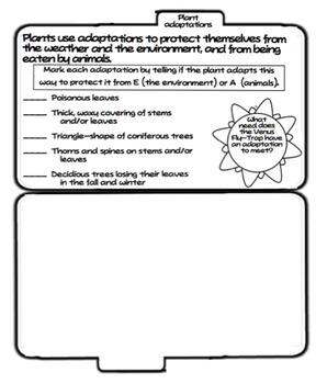 Plant and Animal Tab Booklet BUNDLE (Ohio LS 3)