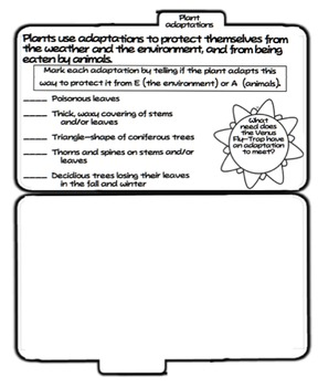 Plant and Animal Tab Booklet BUNDLE (Ohio LS 3)
