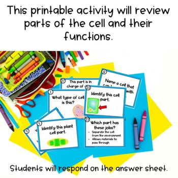 Plant and Animal Task Card Review Activity