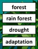 Plant and Animal Word Wall Grades 2-4