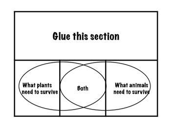 Plant and Animals Interactive Venn Diagram Foldable