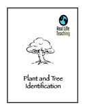 Plant and Tree Identification Lesson and Handouts