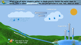 Plant and Water Cycle- step by step guide