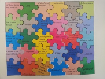 Plant and animal Cell organelles jigsaw puzzle review.