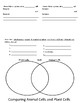 Plant cell and animal cell foldable