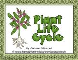 Plant life cycle: teacher book, minibook, anchor chart, craftivity+
