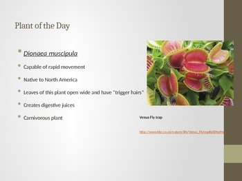 Plant of the Day Warm Up Activity