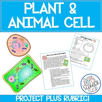 Plant or Animal Cell Project Description PLUS Rubric