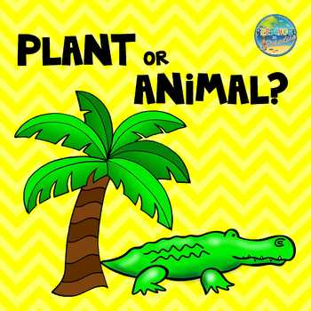Plant or Animal???  Sorting Activities and More