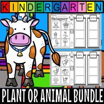 Plant or animal  Mega pack