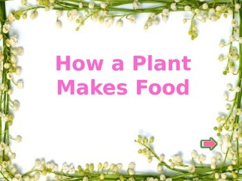 Plant power point