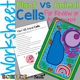 Plant vs Animal Cells Worksheet for Review or Assessment