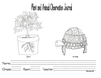 Plant vs. Animal Observation Unit