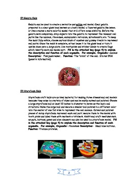 Plant/Animal Cell Project